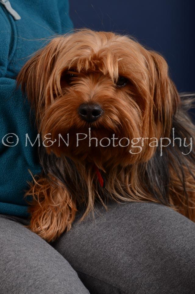 M&N Photography -DSC_4177