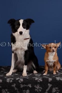 M&N Photography -DSC_5304
