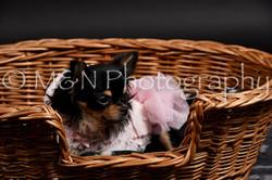 M&N Photography -DSC_2504