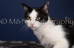 M&N Photography -DSC_4357