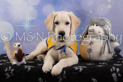 M&N Photography -DSC_6580