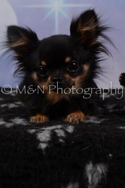 M&N Photography -DSC_6791