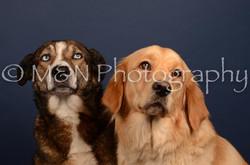 M&N Photography -DSC_4694