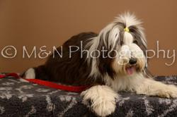 M&N Photography -_SNB0599