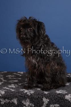 M&N Photography -DSC_4993