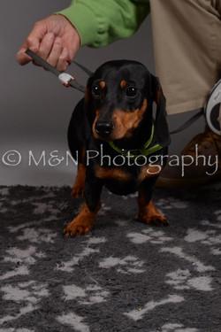 M&N Photography -DSC_2338