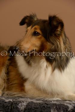 M&N Photography -_SNB0733