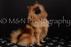 M&N Photography -DSC_5864