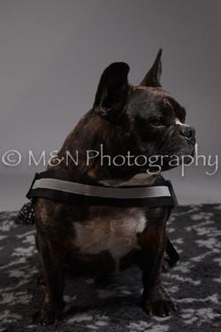 M&N Photography -DSC_1903