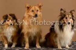 M&N Photography -_SNB0691