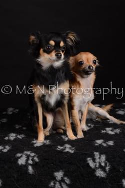 M&N Photography -DSC_5747