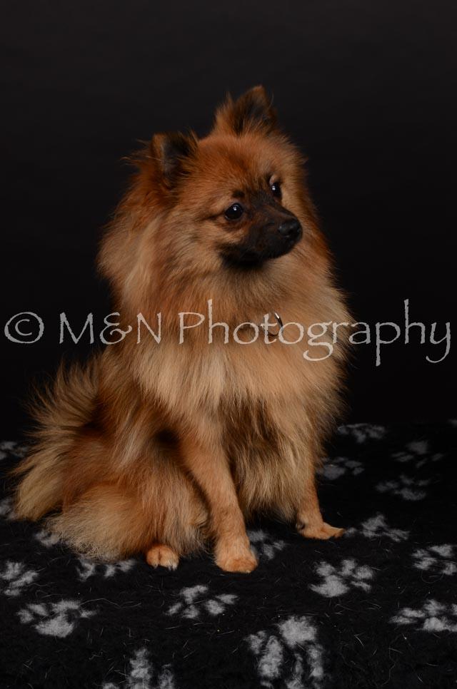 M&N Photography -DSC_5857