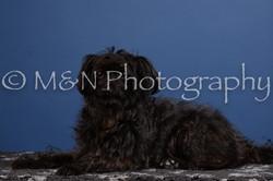 M&N Photography -DSC_4996