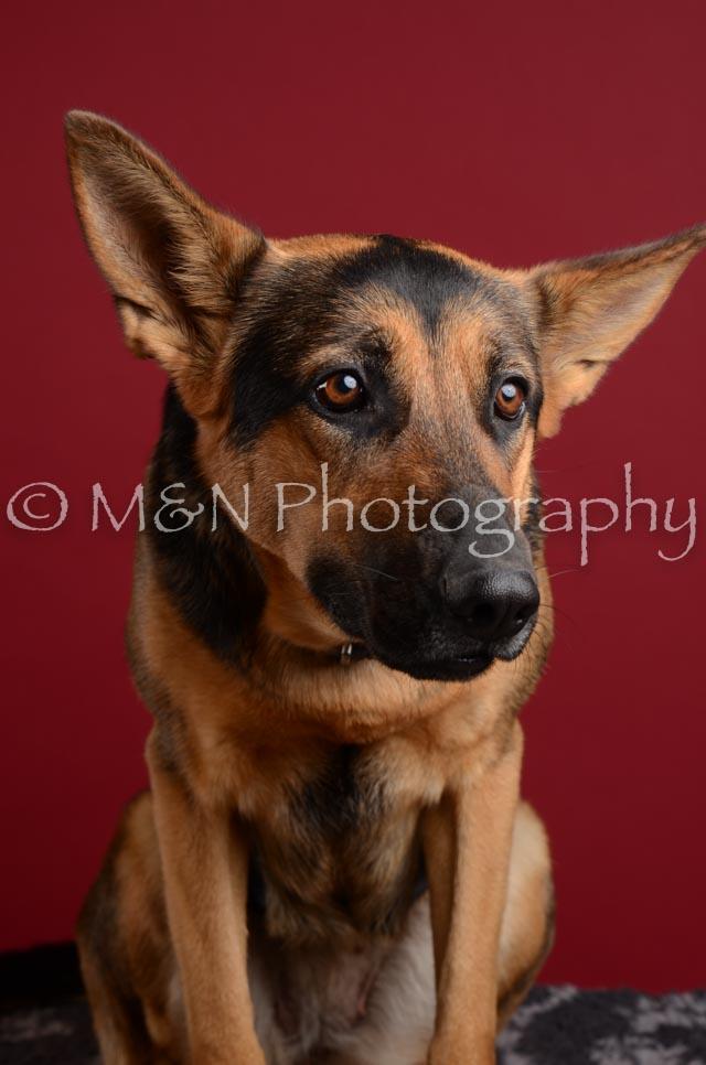M&N Photography -DSC_3762