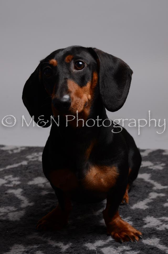M&N Photography -DSC_2858