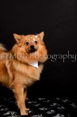 M&N Photography -DSC_5937