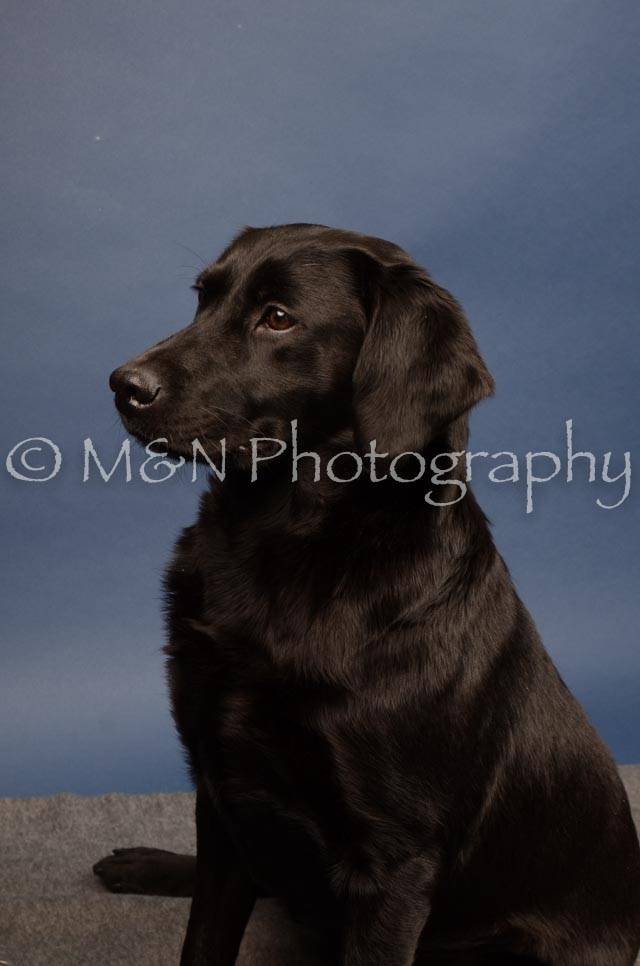 M&N Photography -DSC_4335