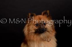 M&N Photography -DSC_5865