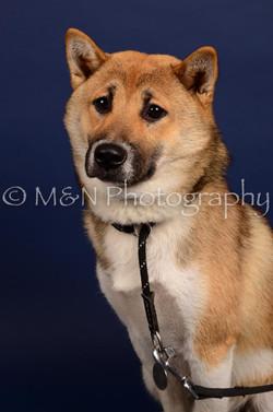 M&N Photography -IMG_4765