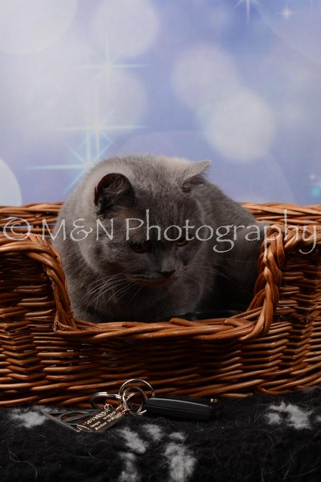 M&N Photography -DSC_6980