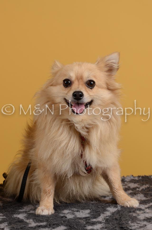 M&N Photography -DSC_4830