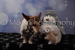 M&N Photography -DSC_7113