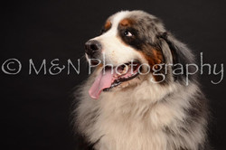M&N Photography -DSC_0192