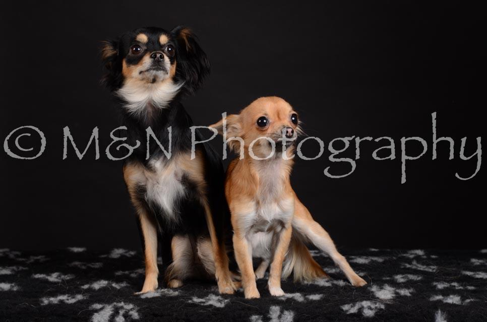 M&N Photography -DSC_5748