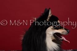 M&N Photography -DSC_3208