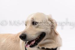 M&N Photography -DSC_8961