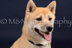 M&N Photography -DSC_0663