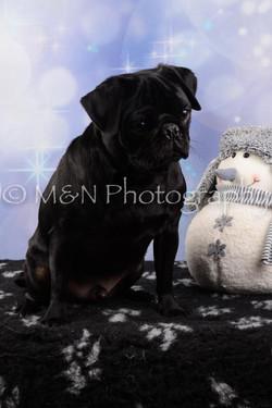 M&N Photography -DSC_6607