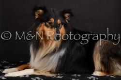 M&N Photography -DSC_5614