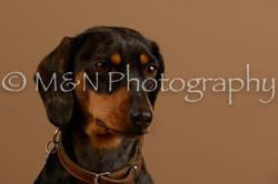 M&N Photography -_SNB0540