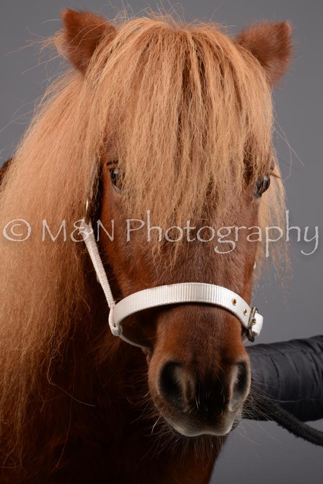 M&N Photography -DSC_2463