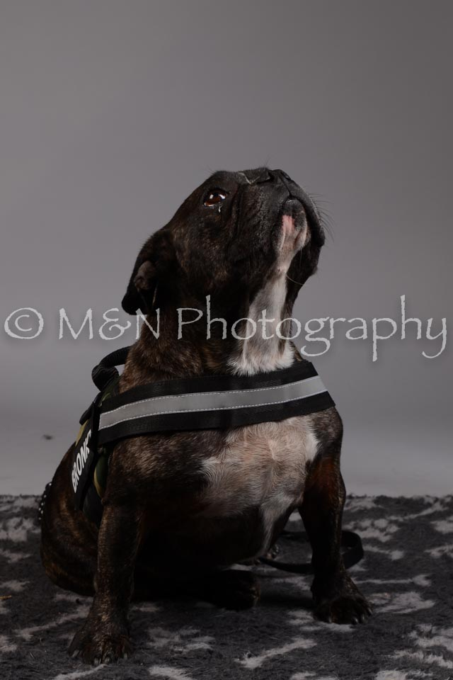 M&N Photography -DSC_1896