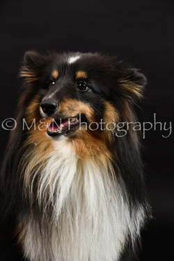 M&N Photography -DSC_2562