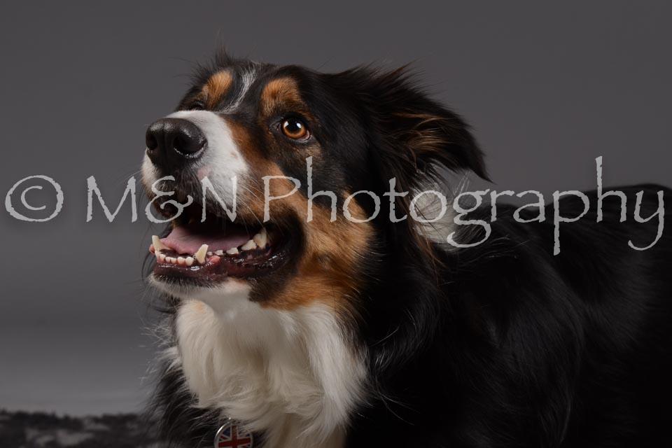 M&N Photography -DSC_2052