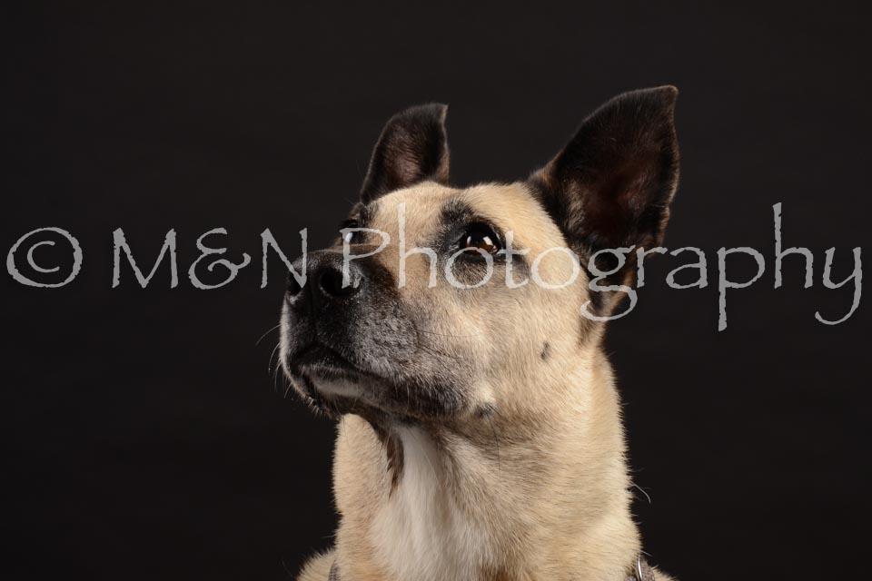 M&N Photography -DSC_9752