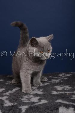 M&N Photography -DSC_4283