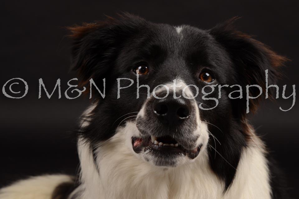 M&N Photography -DSC_9729