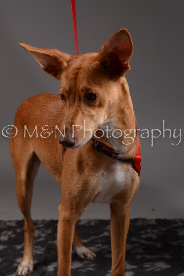 M&N Photography -DSC_1654
