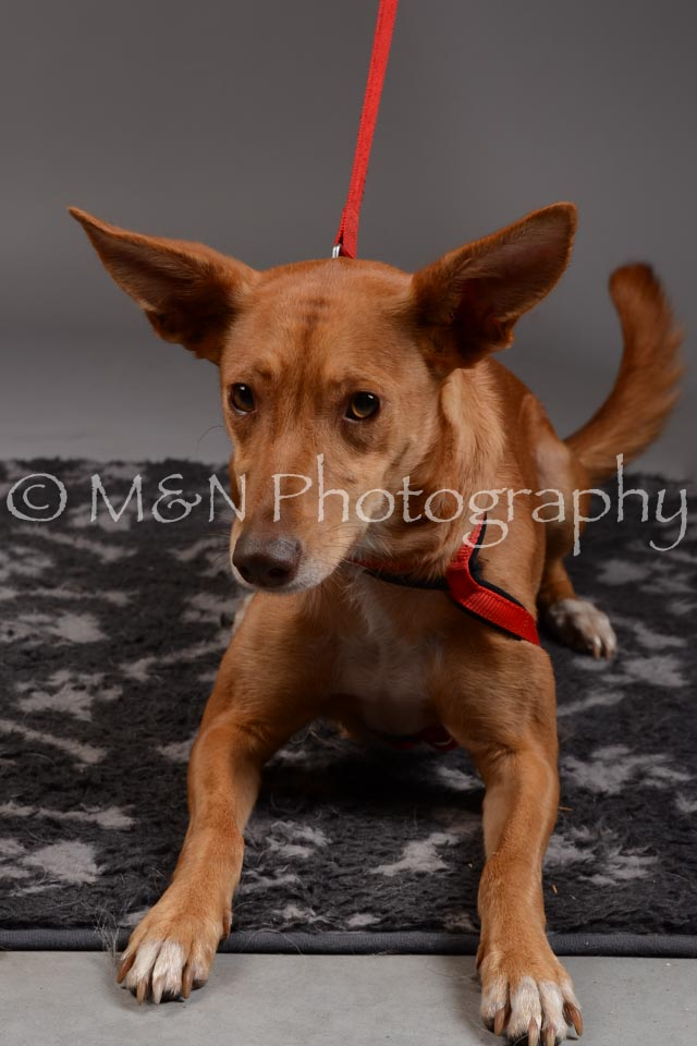 M&N Photography -DSC_1658