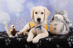 M&N Photography -DSC_6581