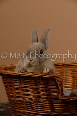 M&N Photography -_SNB0510