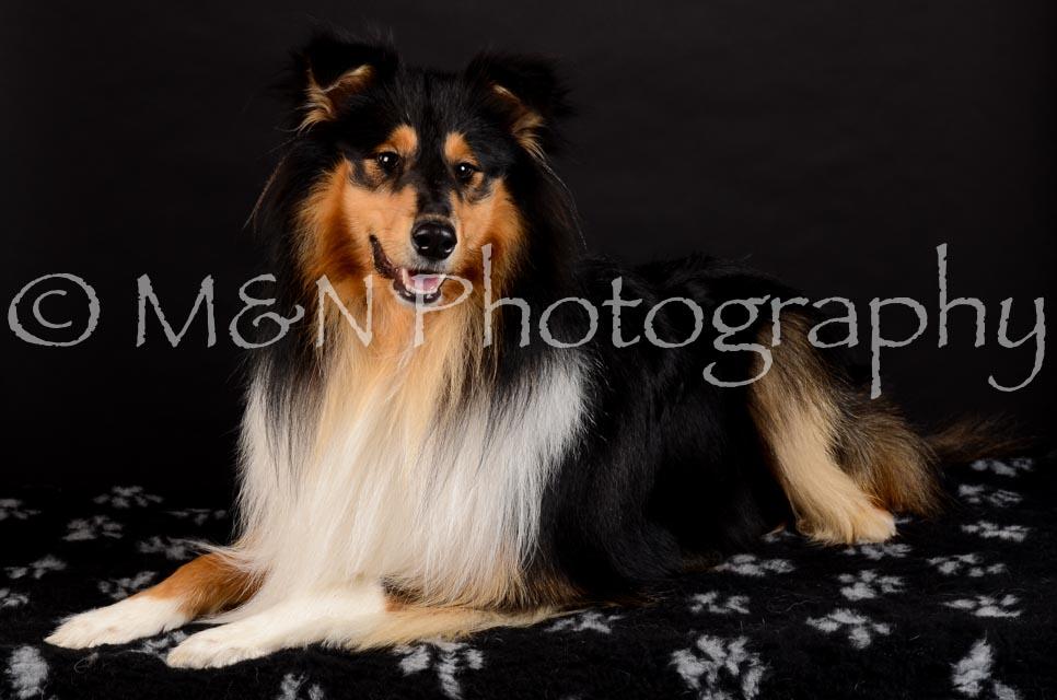 M&N Photography -DSC_5621