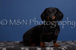M&N Photography -DSC_5361