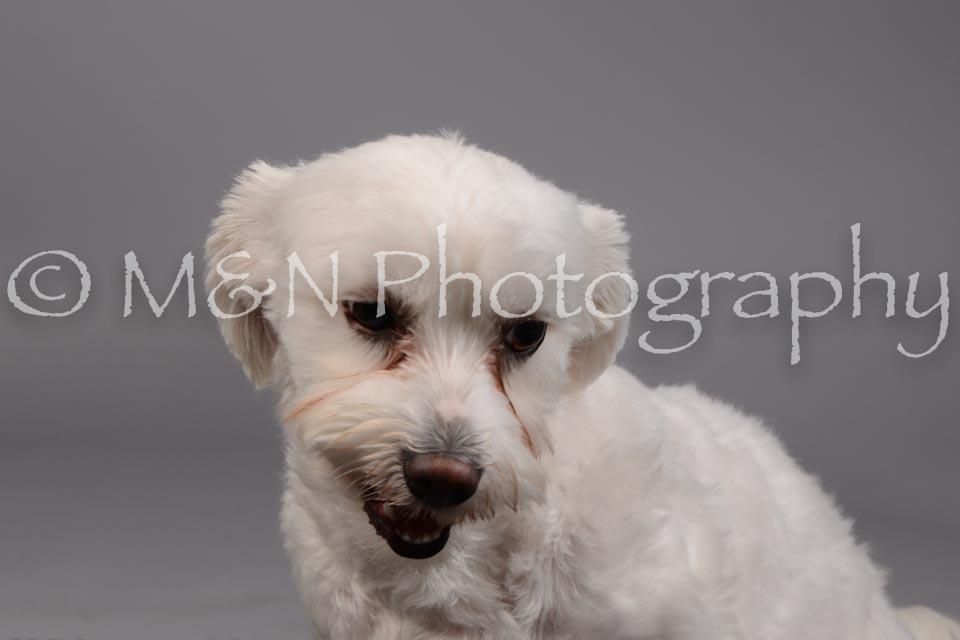 M&N Photography -DSC_1763