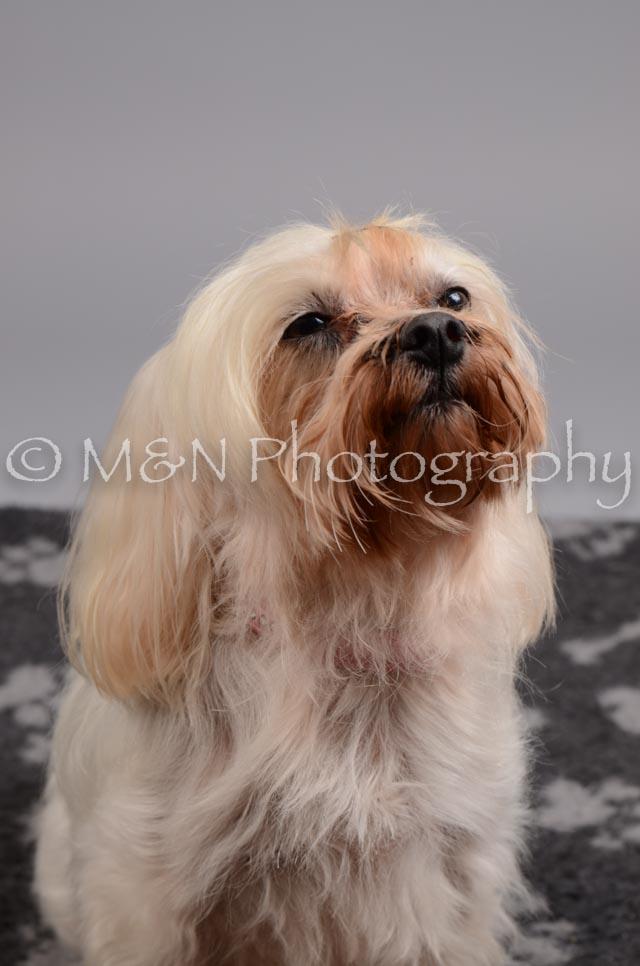 M&N Photography -DSC_2756