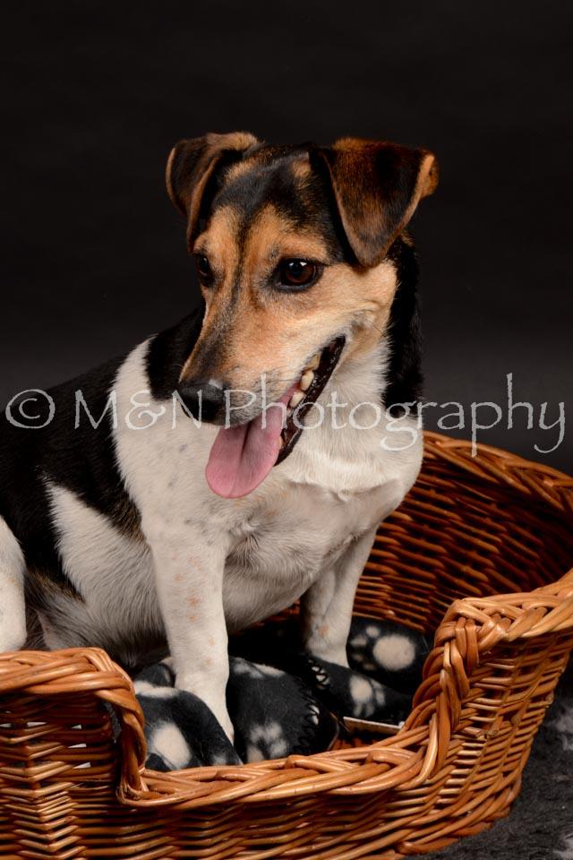 M&N Photography -DSC_0048